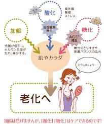 老化の原因「糖化」